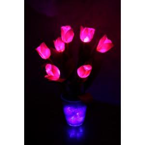 Тюльпаны (7 цветков)