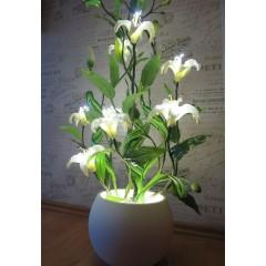 Лилия (11 цветков)