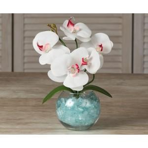 Орхидея М5 (латекс)